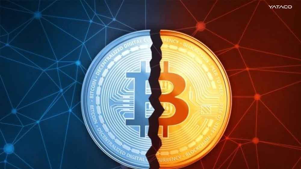 Bitcoin: El derrumbe de todas las criptomonedas